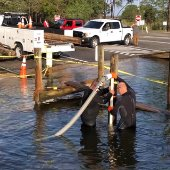 staff removing piling