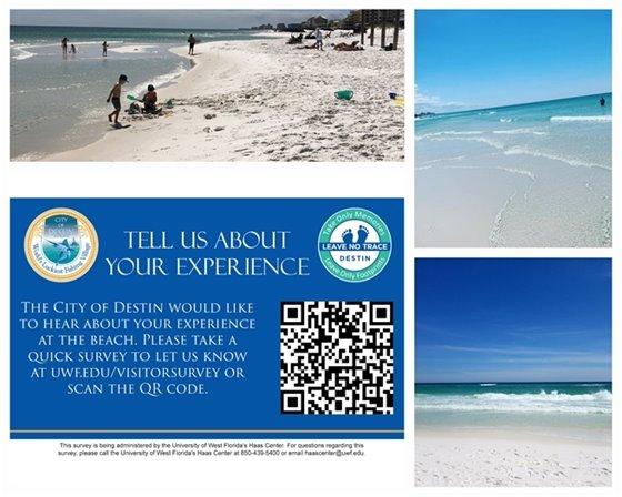 Beach Experience Survey