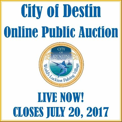 Auction Web Banner
