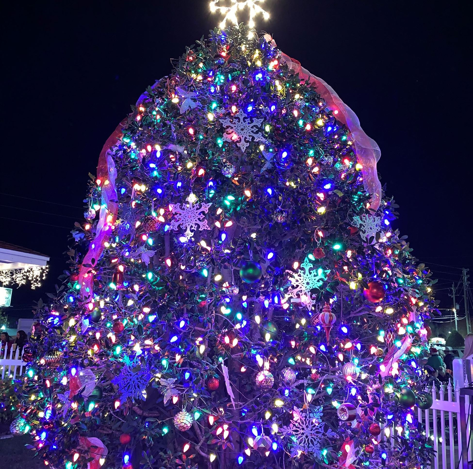 City of Destin Christmas Tree Lit Up at Community Center