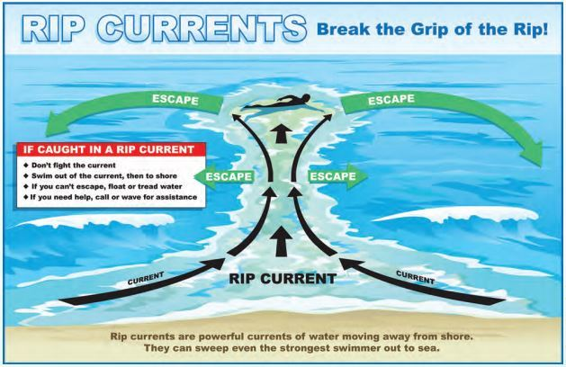 Rip current logo